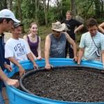 Jardim de Biotratamento Hidrobotânico em Três Coroas