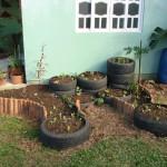 Imagens do curso de hortas em jardim funcional e cultivo em espaços limitados