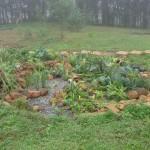 Paisagismo Ecológico  Responsabilidade Ambiental