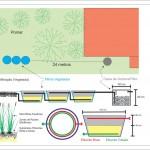 Zonas de Raízes (Wetlands) - Saneamento Ecológico